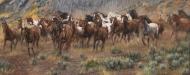 Thundering Hooves